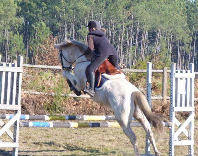 Tin au ranch 2 dec_2013