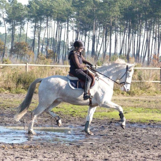 Tin au ranch dec_2013